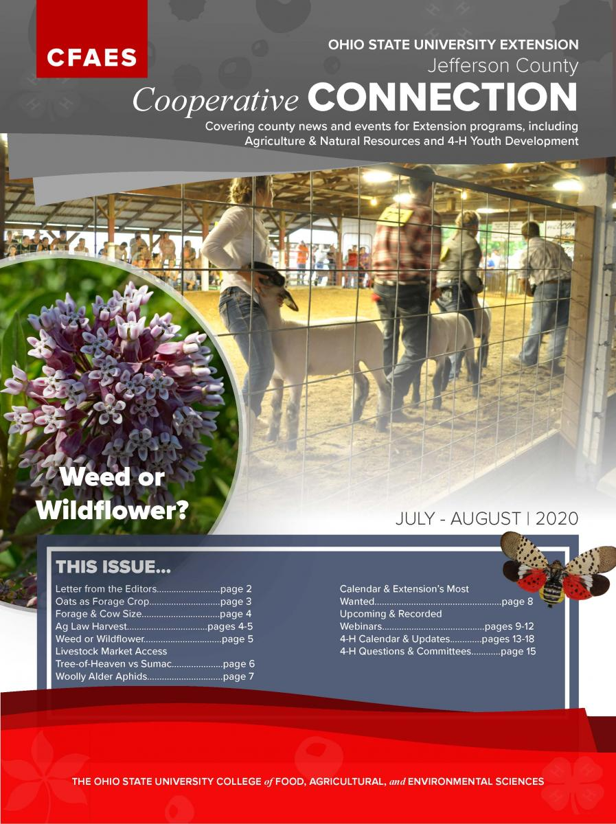 2020 July August Newsletter Cover - Access Newsletter