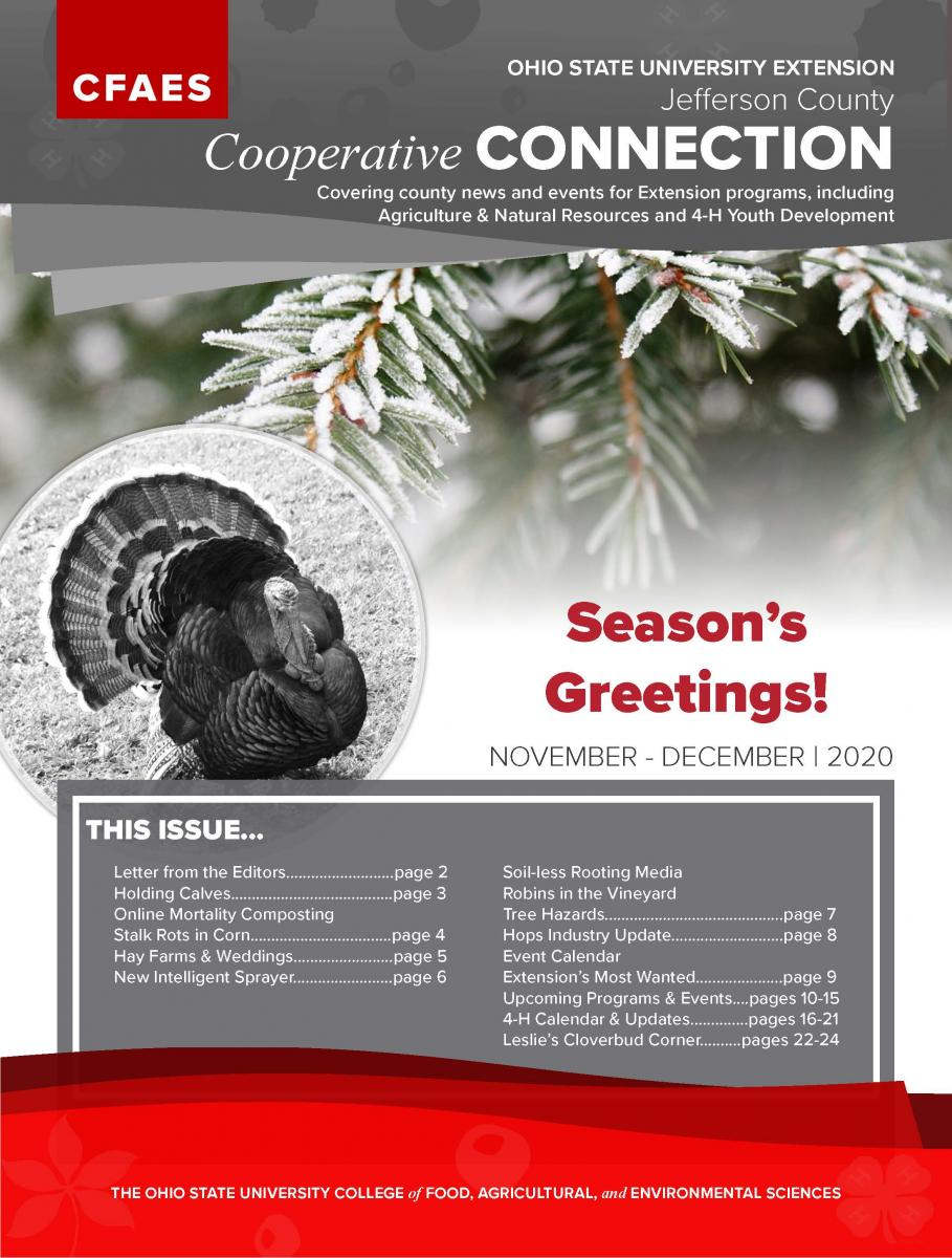 2020 November December Newsletter Cover - Access Newsletter