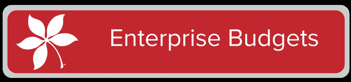 Enterprise Budgets
